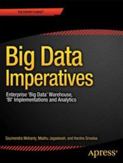 Mohanty, Soumendra - Big Data Imperatives, ebook