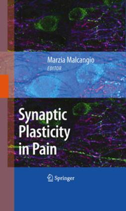 Malcangio, Marzia - Synaptic Plasticity in Pain, ebook