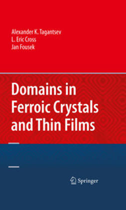 Tagantsev, Alexander K. - Domains in Ferroic Crystals and Thin Films, ebook