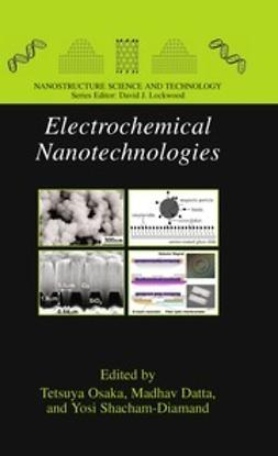 Osaka, Tetsuya - Electrochemical Nanotechnologies, ebook