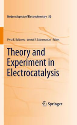 Balbuena, Perla B. - Theory and Experiment in Electrocatalysis, e-bok