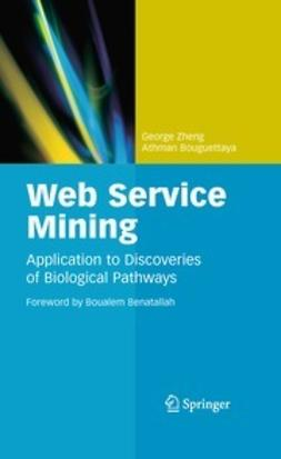 Zheng, George - Web Service Mining, ebook