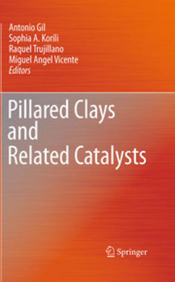 Gil, Antonio - Pillared Clays and Related Catalysts, e-kirja