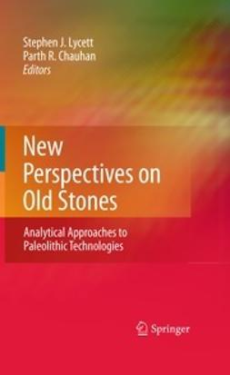 Chauhan, Parth - New Perspectives on Old Stones, e-kirja