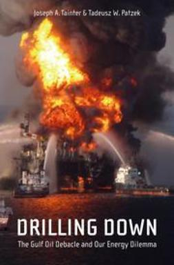 Tainter, Joseph A. - Drilling Down, ebook