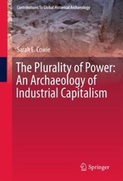 Cowie, Sarah E. - The Plurality of Power, e-kirja