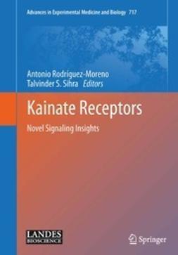 Rodríguez-Moreno, Antonio - Kainate Receptors, ebook