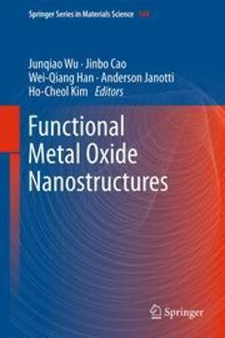 Wu, Junqiao - Functional Metal Oxide Nanostructures, ebook