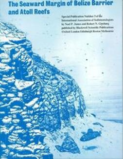 James, N. P. - The Seaward Margin of the Belize Barrier and Atoll Reefs: Special Publication 3 of the IAS, ebook