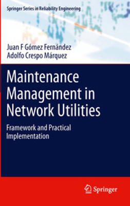 Fernández, Juan F Gómez - Maintenance Management in Network Utilities, ebook