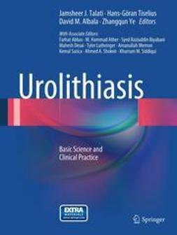 Talati, Jamsheer J. - Urolithiasis, ebook