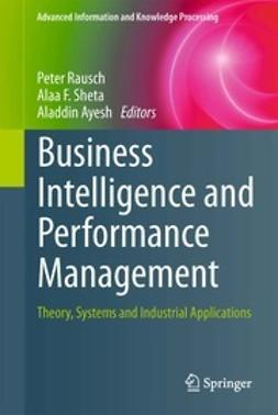 Rausch, Peter - Business Intelligence and Performance Management, e-kirja