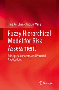 Chan, Hing Kai - Fuzzy Hierarchical Model for Risk Assessment, ebook