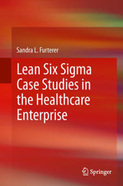 Furterer, Sandra L. - Lean Six Sigma Case Studies in the Healthcare Enterprise, e-kirja