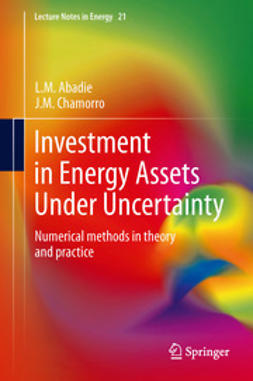 Abadie, L.M. - Investment in Energy Assets Under Uncertainty, ebook