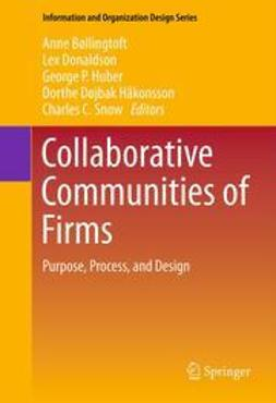 Bøllingtoft, Anne - Collaborative Communities of Firms, e-kirja