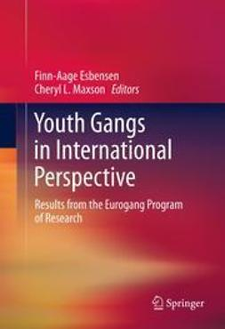 Esbensen, Finn-Aage - Youth Gangs in International Perspective, e-bok