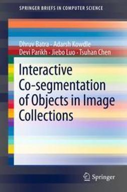 Batra, Dhruv - Interactive Co-segmentation of Objects in Image Collections, ebook
