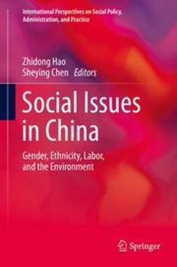Hao, Zhidong - Social Issues in China, e-bok