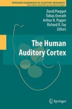Poeppel, David - The Human Auditory Cortex, ebook