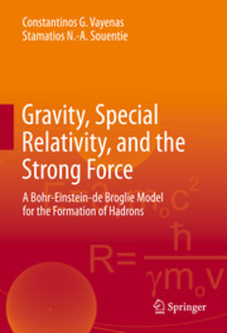 Vayenas, Constantinos G. - Gravity, Special Relativity, and the Strong Force, e-kirja
