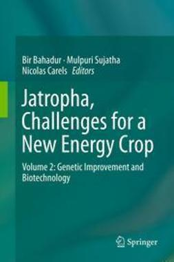 Bahadur, Bir - Jatropha, Challenges for a New Energy Crop, ebook