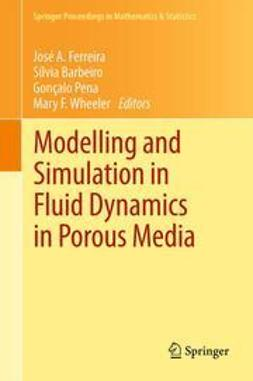 Ferreira, José A. - Modelling and Simulation in Fluid Dynamics in Porous Media, ebook