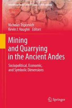 Tripcevich, Nicholas - Mining and Quarrying in the Ancient Andes, ebook