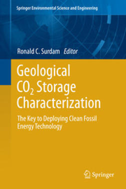 Surdam, Ronald C. - Geological CO2 Storage Characterization, ebook
