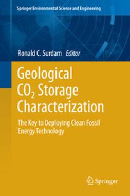 Surdam, Ronald C. - Geological CO2 Storage Characterization, e-bok