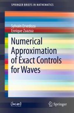 Ervedoza, Sylvain - Numerical Approximation of Exact Controls for Waves, ebook