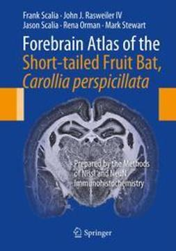Scalia, Frank - Forebrain Atlas of the Short-tailed Fruit Bat, Carollia perspicillata, ebook