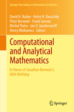 Bailey, David H. - Computational and Analytical Mathematics, ebook