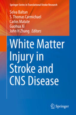 Baltan, Selva - White Matter Injury in Stroke and CNS Disease, ebook
