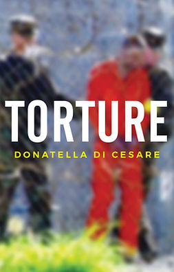Cesare, Donatella Di - Torture, ebook