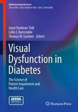 Tombran-Tink, Joyce - Visual Dysfunction in Diabetes, ebook