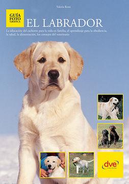 Rossi, Valeria - El labrador, ebook