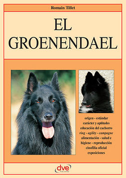Tillet, Romain - El groenendael, ebook