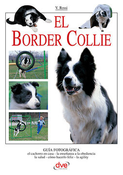 Rossi, Valeria - El border collie, ebook