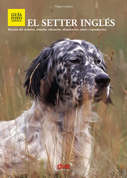 Cattaneo, Filippo - El setter ingles, ebook