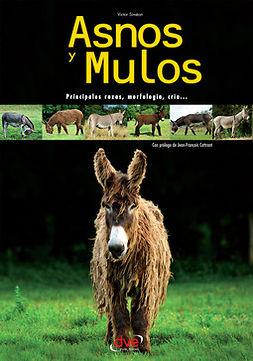 Siméon, Victor - Asnos y mulos, ebook