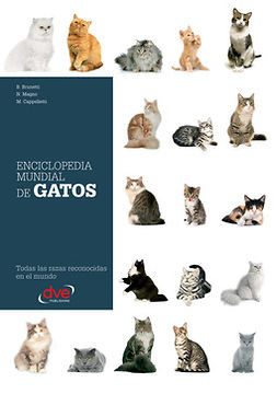 Brunetti, B. - Enciclopedia mundial de gatos, e-bok