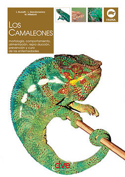 Brunetti, L. - LOS CAMALEONES, ebook