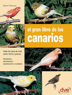 Ravazzi, Gianni - El gran libro de los canarios, ebook