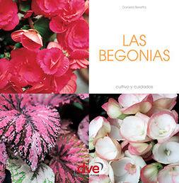 Beretta, Daniela - LAS BEGONIAS, ebook