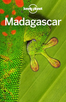 Filou, Emilie - Lonely Planet Madagascar, ebook