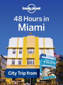 48 Hours in Miami