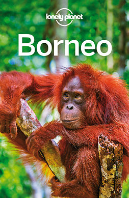 Albiston, Isabel - Lonely Planet Borneo, e-bok