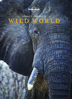 Planet, Lonely - Lonely Planet's Wild World, ebook
