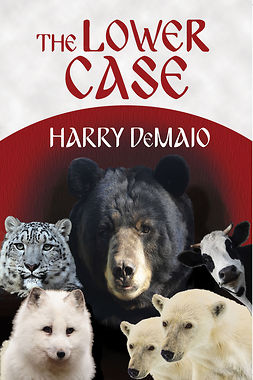 DeMaio, Harry - The Lower Case, ebook
